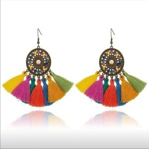 Dangling Multi colored tassle earrings